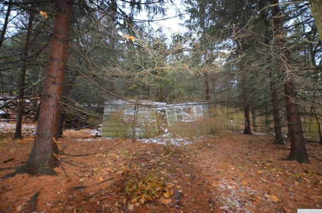 6035 Route 81, Greenville, NY 12083 (MLS #133273) :: Gabel Real Estate