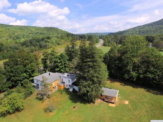 11003 Rt. 23A, Lexington, NY 12452 (MLS #133278) :: Gabel Real Estate