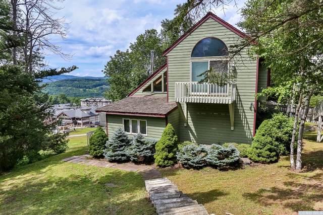 151 Trailside Road, Windham, NY 12496 (MLS #133284) :: Gabel Real Estate