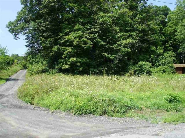 24 Old State Rd, Coeymans, NY 12045 (MLS #133301) :: Gabel Real Estate