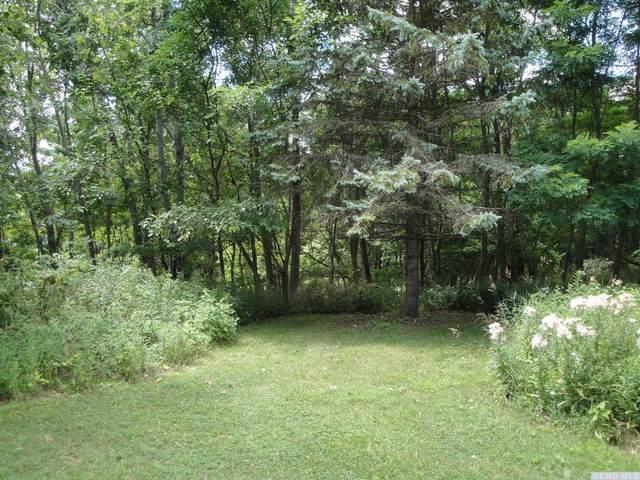 0 Pine Crest Lane, Greenville, NY 12083 (MLS #133326) :: Gabel Real Estate