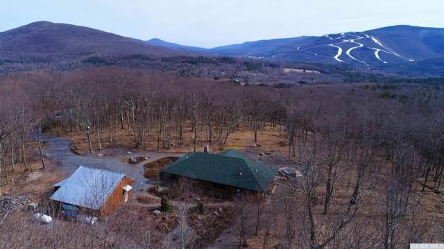 48 Eagles Nest, Jewett, NY 12444 (MLS #133344) :: Gabel Real Estate