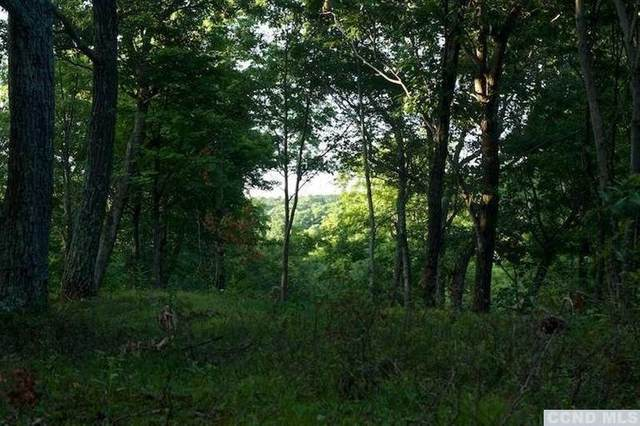0 West Hill Road, Austerlitz, NY 12017 (MLS #133364) :: Gabel Real Estate
