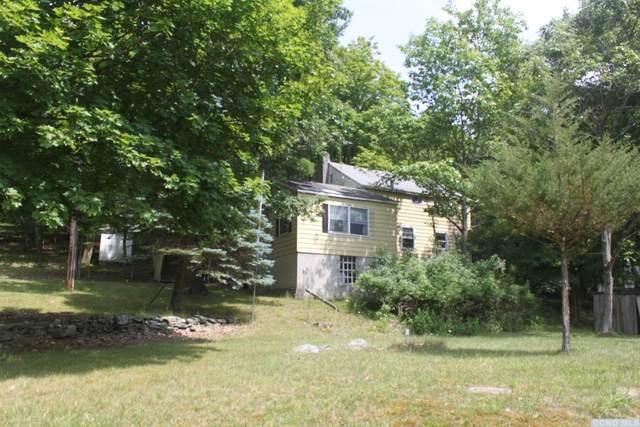 203 Stone Jug Road, Taghkanic, NY 12521 (MLS #133381) :: Gabel Real Estate