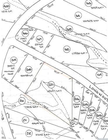 207 Longwood Drive, Athens, NY 12015 (MLS #133383) :: Gabel Real Estate