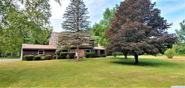 170 County Rt. 40, Windham, NY 12439 (MLS #133387) :: Gabel Real Estate