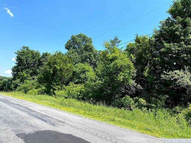 0 Flats Road, Coxsackie, NY 12051 (MLS #133393) :: Gabel Real Estate