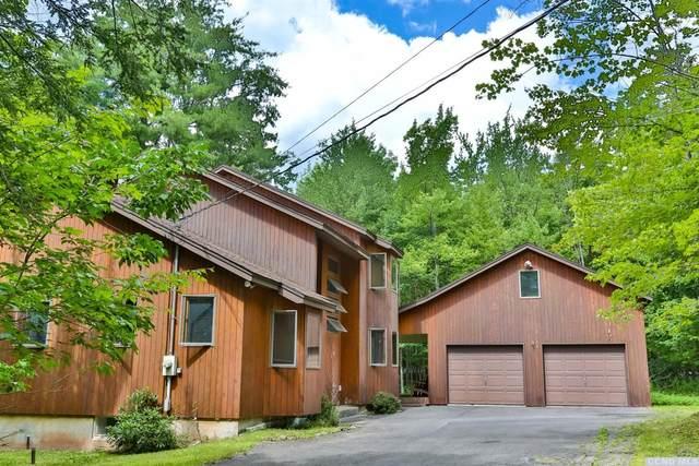 57 High Ridge Rd, Windham, NY 12496 (MLS #133404) :: Gabel Real Estate