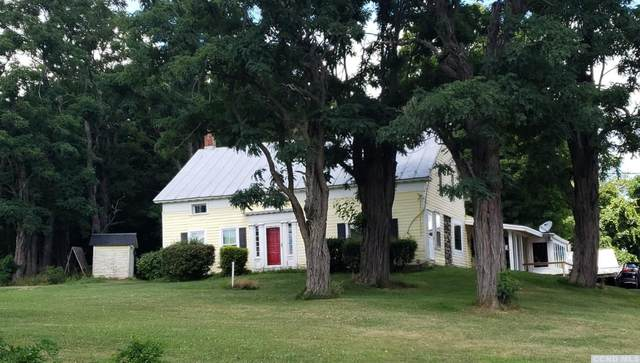 1431 Potter Mountain Rd, Conesville, NY 12076 (MLS #133416) :: Gabel Real Estate