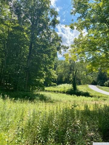 128 Field Road, Clinton, NY 12514 (MLS #133421) :: Gabel Real Estate
