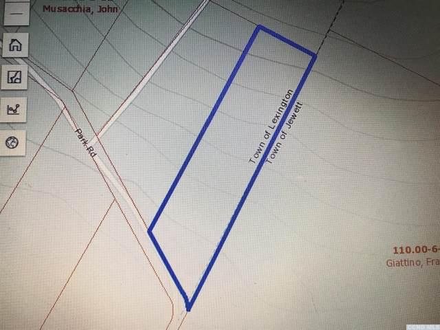 0 Park Road, Lexington, NY 12452 (MLS #133422) :: Gabel Real Estate