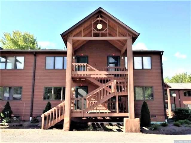 11 Quads Way, Windham, NY 12496 (MLS #133459) :: Gabel Real Estate