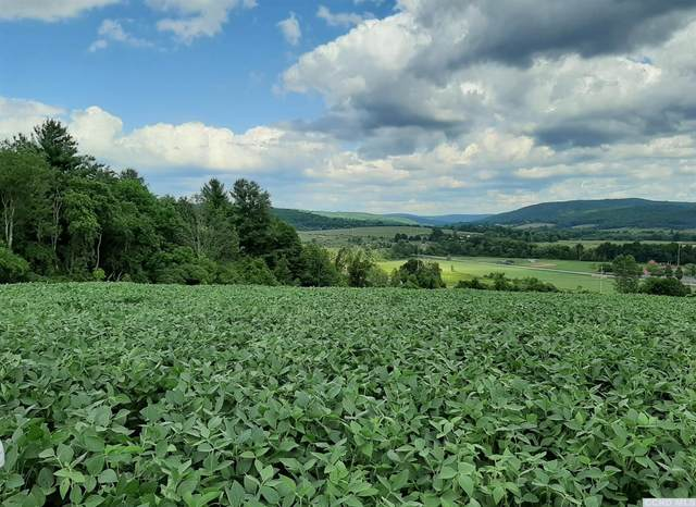 0 Bloody Hill Road, Taghkanic, NY 12523 (MLS #133464) :: Gabel Real Estate