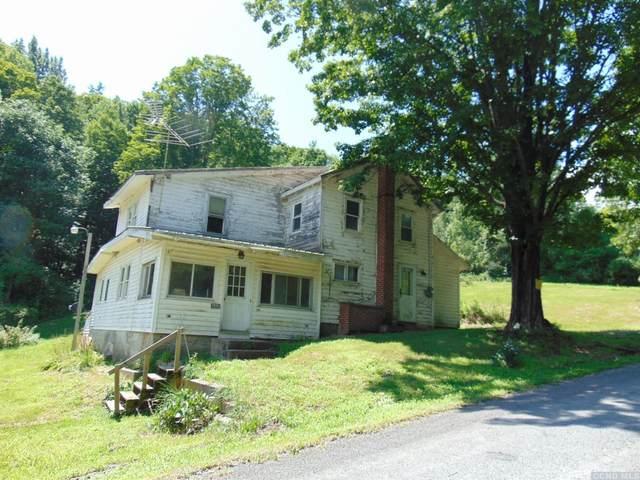 610 Gridley Road, Middleburgh, NY 12122 (MLS #133502) :: Gabel Real Estate