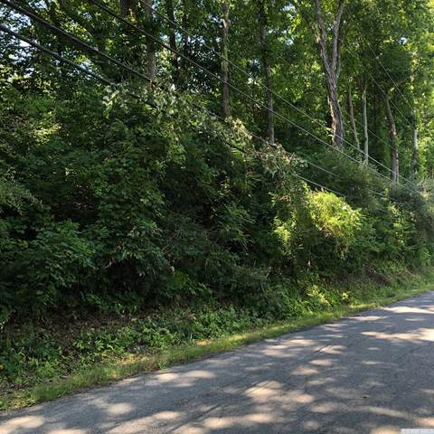 0 Old Route 82, Taghkanic, NY 12523 (MLS #133687) :: Gabel Real Estate