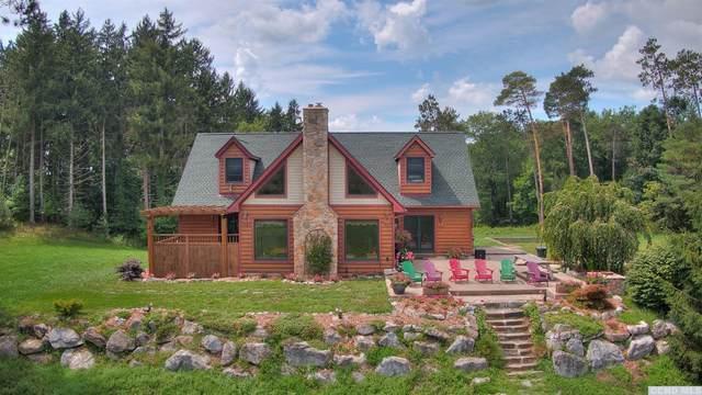 555 Overlook Road, Copake, NY 12529 (MLS #133798) :: Gabel Real Estate
