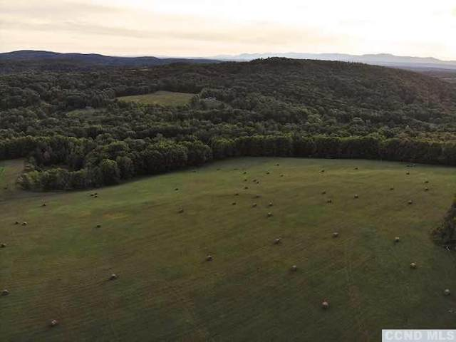 0 County Route 9, Chatham, NY 12037 (MLS #133880) :: Gabel Real Estate