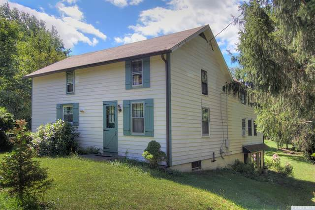 49 Farm Road, Copake, NY 12516 (MLS #133971) :: Gabel Real Estate