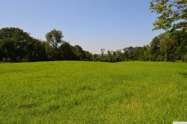 0 County Route 13, Old Chatham, NY 12136 (MLS #133974) :: Gabel Real Estate