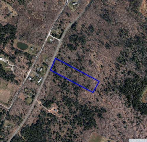 1279 Route 296, Jewett, NY 12444 (MLS #133994) :: Gabel Real Estate