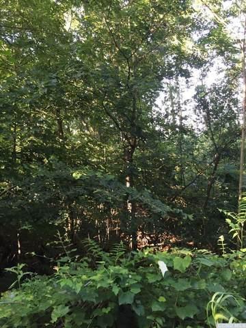 0 Gregory Hollow Road, Hamden, NY 13782 (MLS #134032) :: Gabel Real Estate