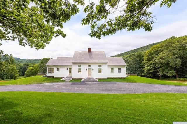 404 Overlook Drive, Hillsdale, NY 12529 (MLS #134038) :: Gabel Real Estate
