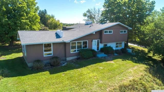 222 Malden Bridge Road, Nassau, NY 12123 (MLS #134057) :: Gabel Real Estate