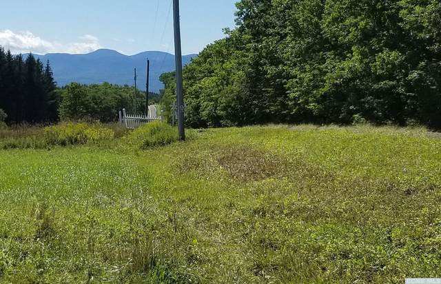 0 County Route 358, Rensselaerville, NY 12147 (MLS #134090) :: Gabel Real Estate