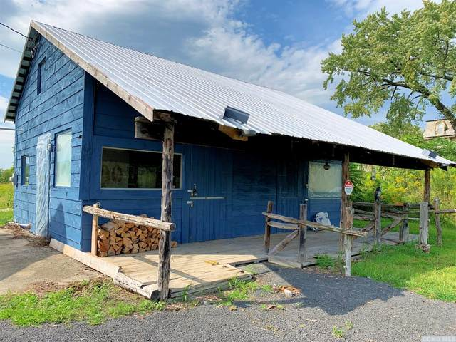 1691 Nys Route 385, Athens, NY 12015 (MLS #134211) :: Gabel Real Estate
