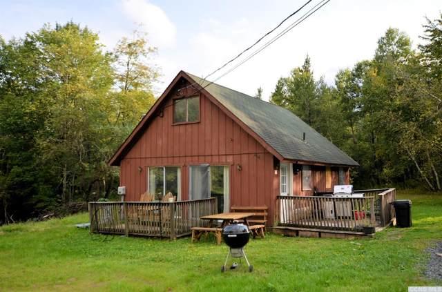 68 Squaw Valley Road, Jewett, NY 12424 (MLS #134238) :: Gabel Real Estate