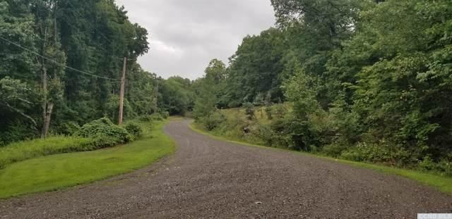 0 Sugar Mt Road, Taghkanic, NY 12523 (MLS #134251) :: Gabel Real Estate