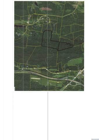 0 Sopok Road, Taghkanic, NY 12523 (MLS #134252) :: Gabel Real Estate