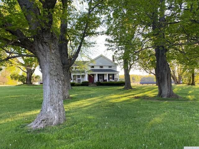 125 Trout Brook Road, Copake, NY 12516 (MLS #134280) :: Gabel Real Estate