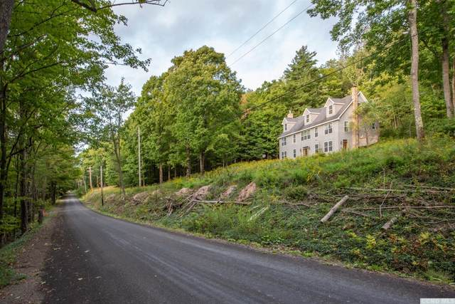 616 Sibley Gulf Road, Cooperstown, NY 13326 (MLS #134319) :: Gabel Real Estate