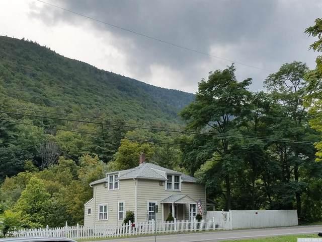 3525 Cr 23A, Catskill, NY 12414 (MLS #134417) :: Gabel Real Estate