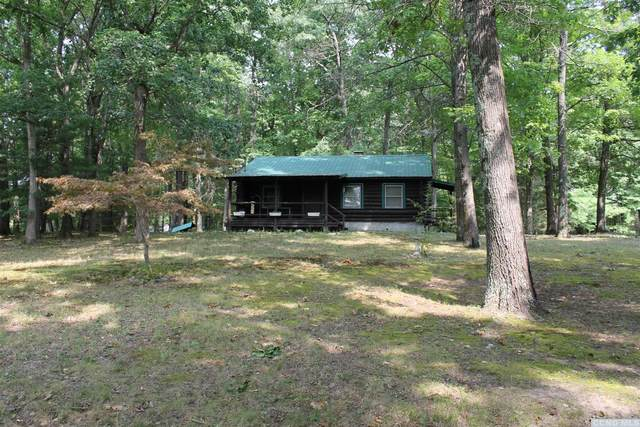 896 County Route 13, Old Chatham, NY 12136 (MLS #134425) :: Gabel Real Estate