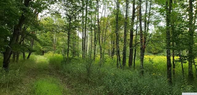0 Prosperous Valley, Wallkill, NY 10940 (MLS #134485) :: Gabel Real Estate