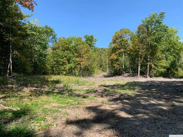 0 East Rd, Stephentown, NY 12168 (MLS #134531) :: Gabel Real Estate