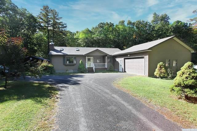151 E Honey Hollow Rd, Earlton, NY 12058 (MLS #134644) :: Gabel Real Estate