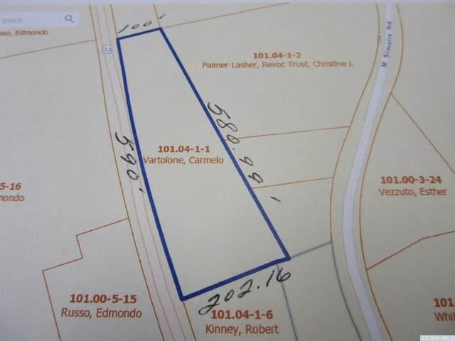 0 Nys 32S, Cairo, NY 12482 (MLS #134669) :: Gabel Real Estate