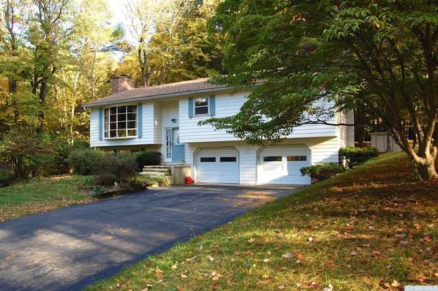 1508 Arnolds Mills Road, Ghent, NY 12075 (MLS #134694) :: Gabel Real Estate