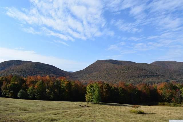788 Evergreen Mountain Road, Westkill, NY 12492 (MLS #134704) :: Gabel Real Estate