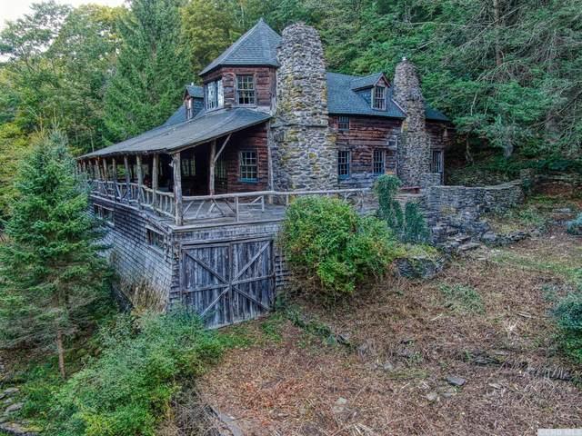 543 Oliverea Road, Shandaken, NY 12410 (MLS #134751) :: Gabel Real Estate