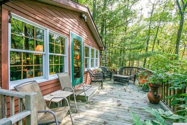 0 Spring St, Craryville, NY 12521 (MLS #134777) :: Gabel Real Estate