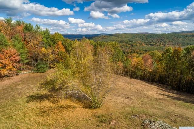 0 Deer Ridge Road, East Chatham, NY 12060 (MLS #134804) :: Gabel Real Estate