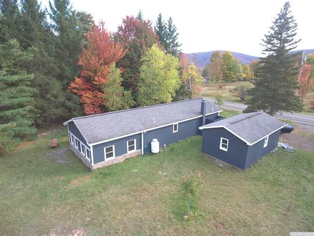 5202 County Route 23C, Jewett, NY 12444 (MLS #134822) :: Gabel Real Estate