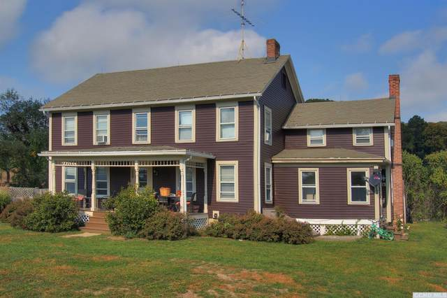 821 County Rt 7, Gallatin, NY 12567 (MLS #134880) :: Gabel Real Estate