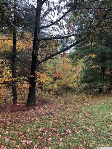 0 County Rte 10, Taghkanic, NY 12523 (MLS #134887) :: Gabel Real Estate