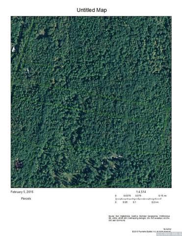 0 Bogart Road, Catskill, NY 12463 (MLS #134897) :: Gabel Real Estate