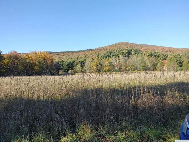 421 County Route 56, Windham, NY 12496 (MLS #134911) :: Gabel Real Estate
